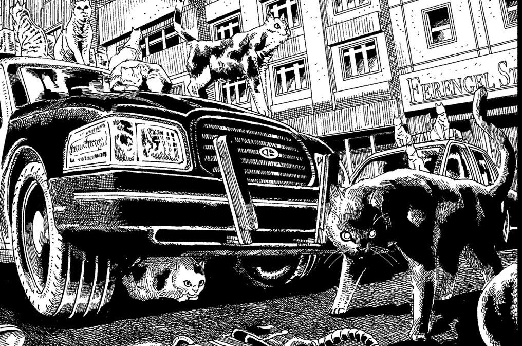 第3話「任務猫作戦(前編)」